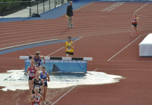 Steeplechase obstacle